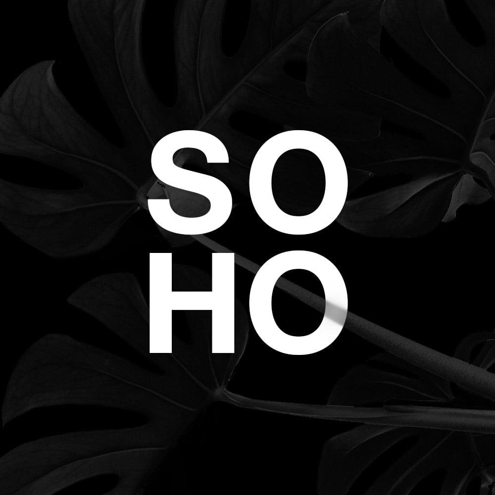 SOHO Brochure